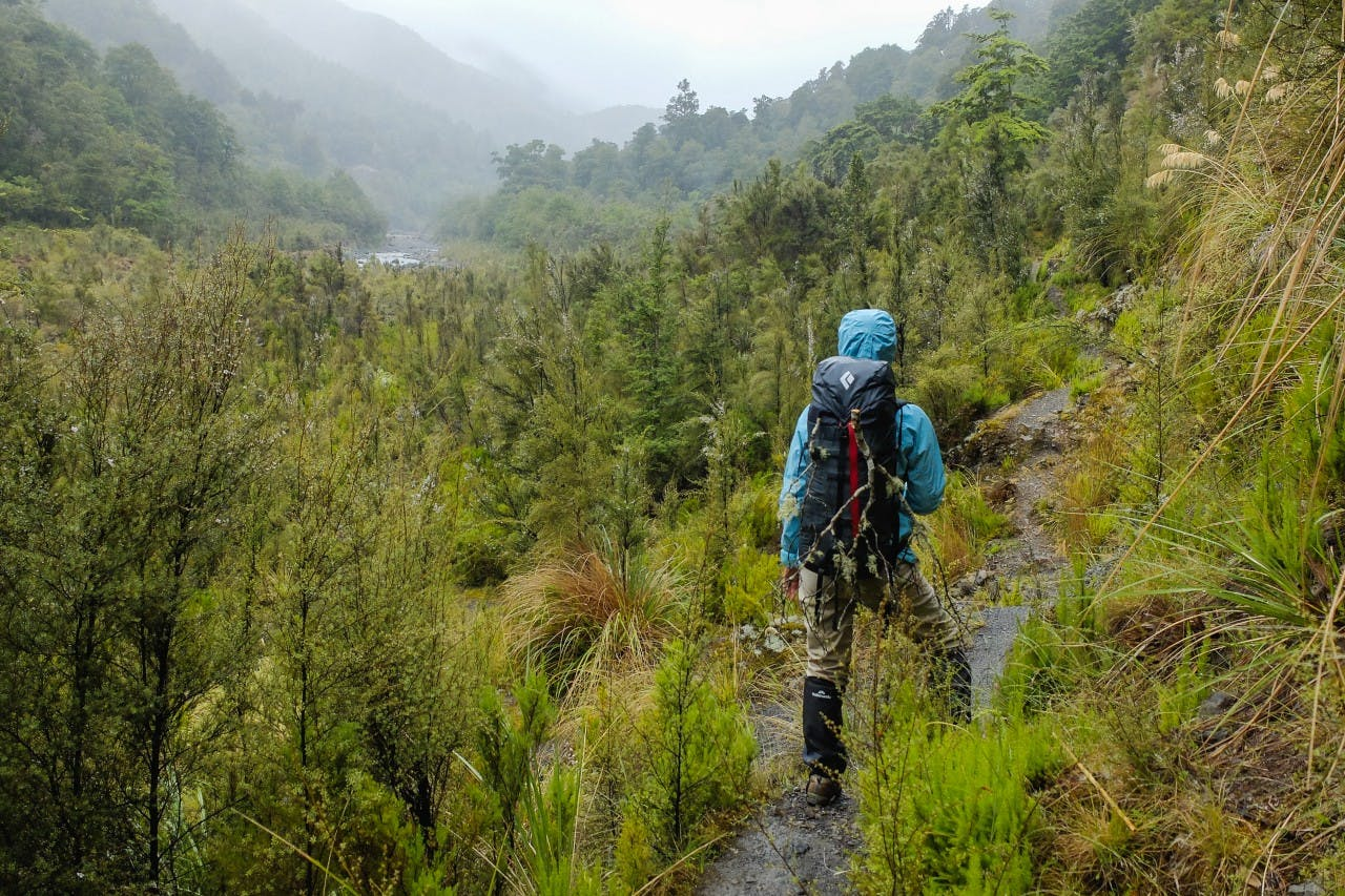 Standing the test of time - Wilderness Magazine NZ