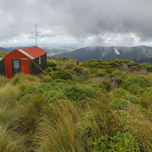 Tararua Southern Crossing, Tararua Forest Park - Hiking & Tramping
